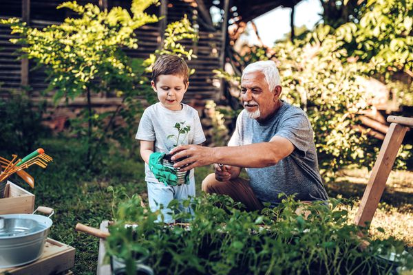 Grandfather and son in garden