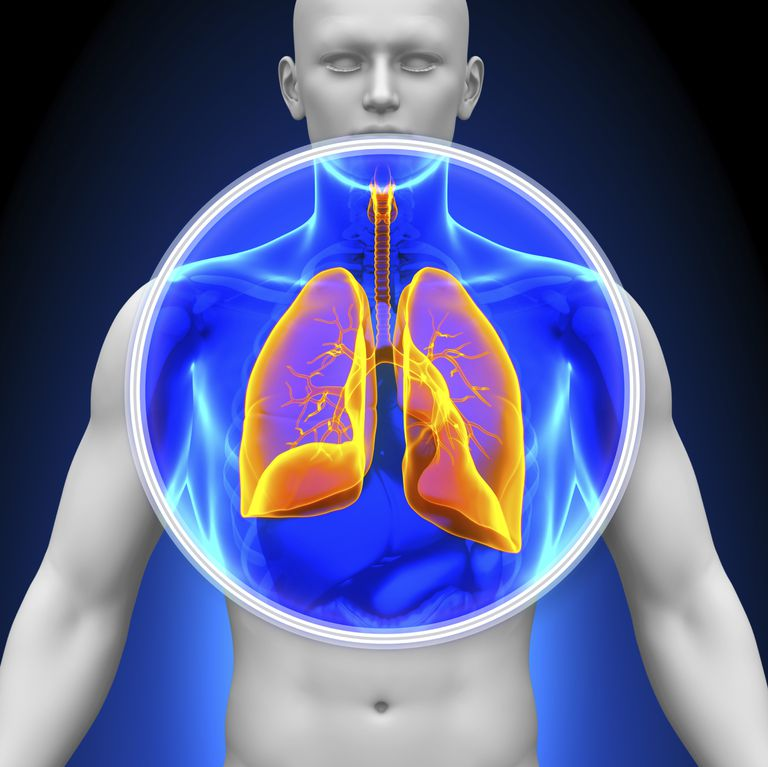 The Different Types of Lung Cancer