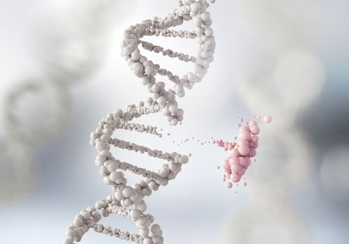 gene mutation illustrating the non-BRCA gene mutations that raise breast cancer risk