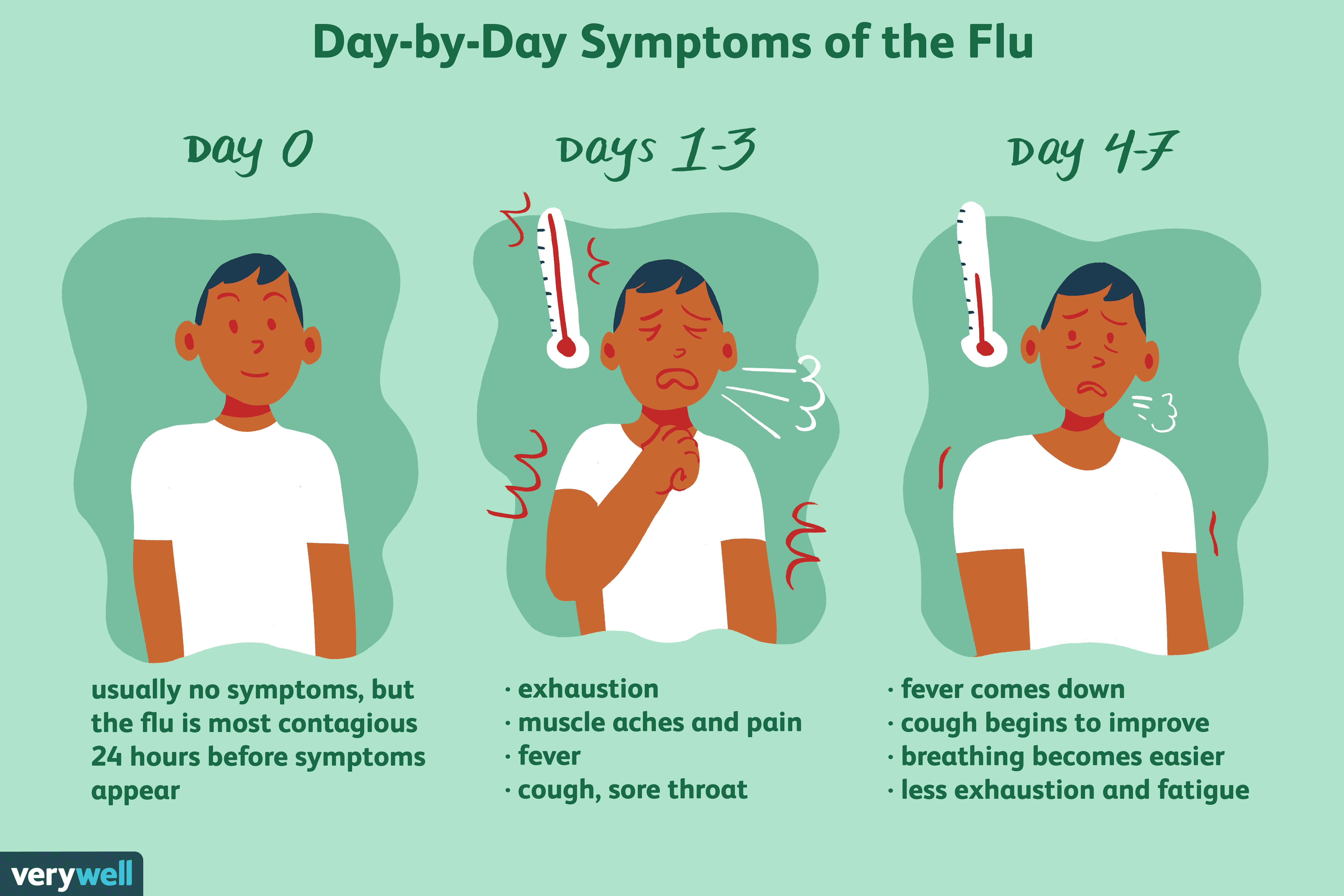 examing how the flu progresses day after day