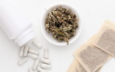 Mugwort capsules, tea bags, and dried leaves