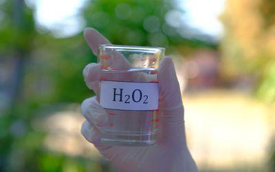Hydrogen peroxide solution in a beaker