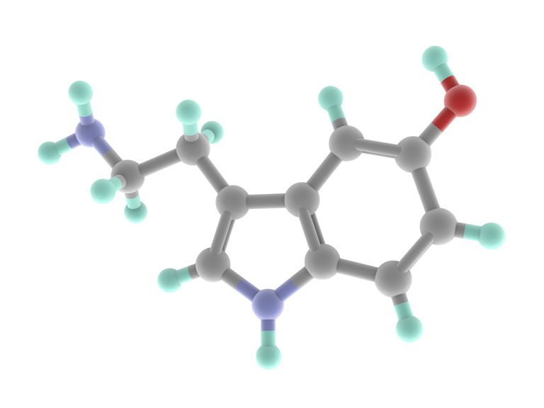 Model shows the molecular structure of serotonin.