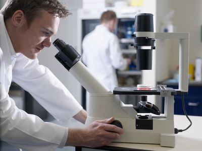 Scientist Viewing Cell Culture with Inverted Microscope