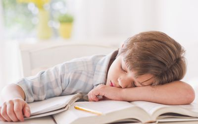 A tired boy sleeping on his books