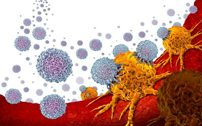 lymphocytes attacking a tumor as in TIL therapy