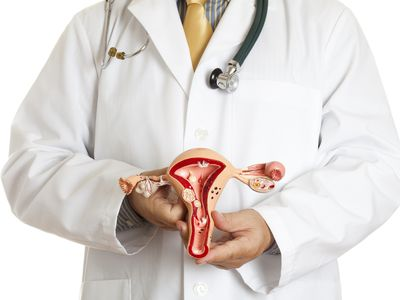 Doctor holding an anatomically correct model of uterus and ovaries with some most common pathologies: endometriosis, adhesions, fibroids, salpingitis, cysts, polyps and various carcinoma. White background