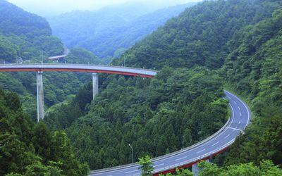A bridge beginning close and ending at a distance