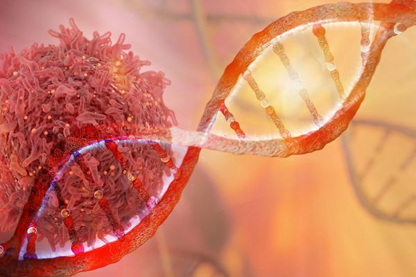BRCA gene mutation as a cause of cancer