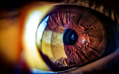 How Long Do Pupils Remain Dilated After an Eye Exam?