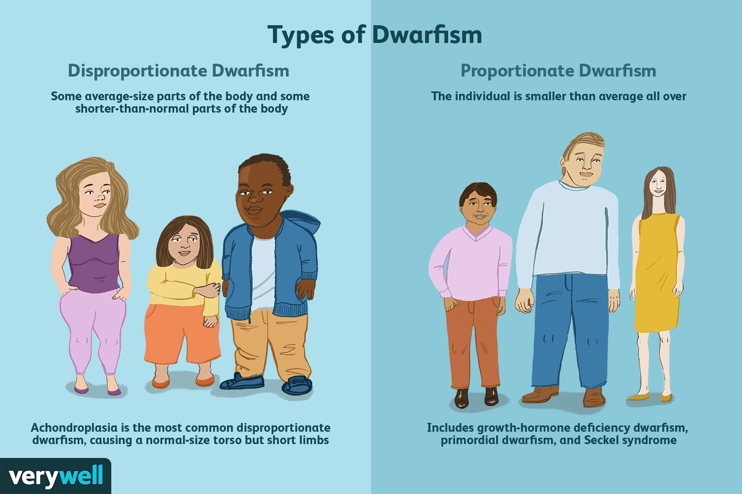 datatable dwarfism treatment - HD 1500×1000