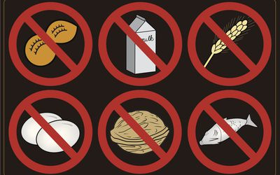 Symbols of the most common food allergies. Ideal icons for menus, classrooms, newsletters, lunchrooms.