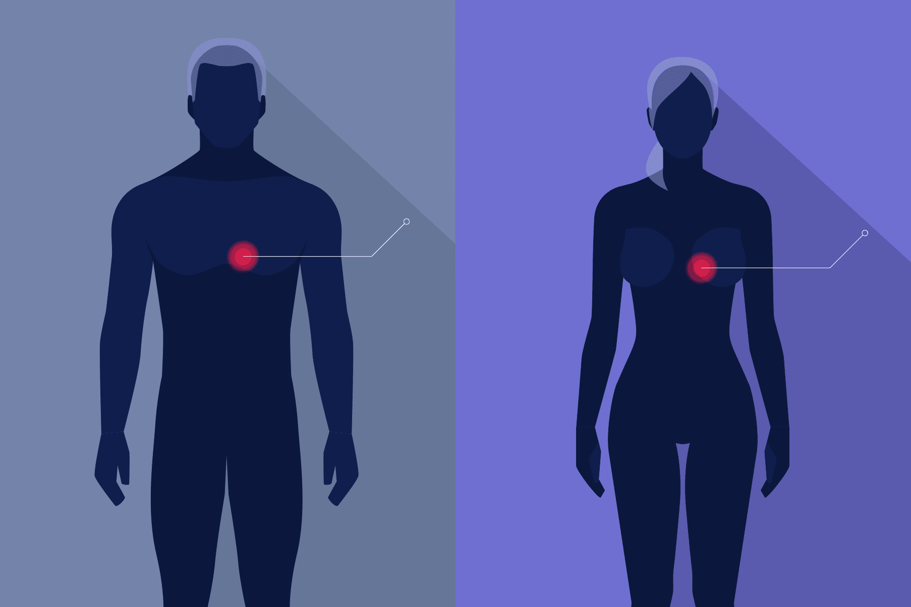 Illustration of man and woman showing the location of their hearts