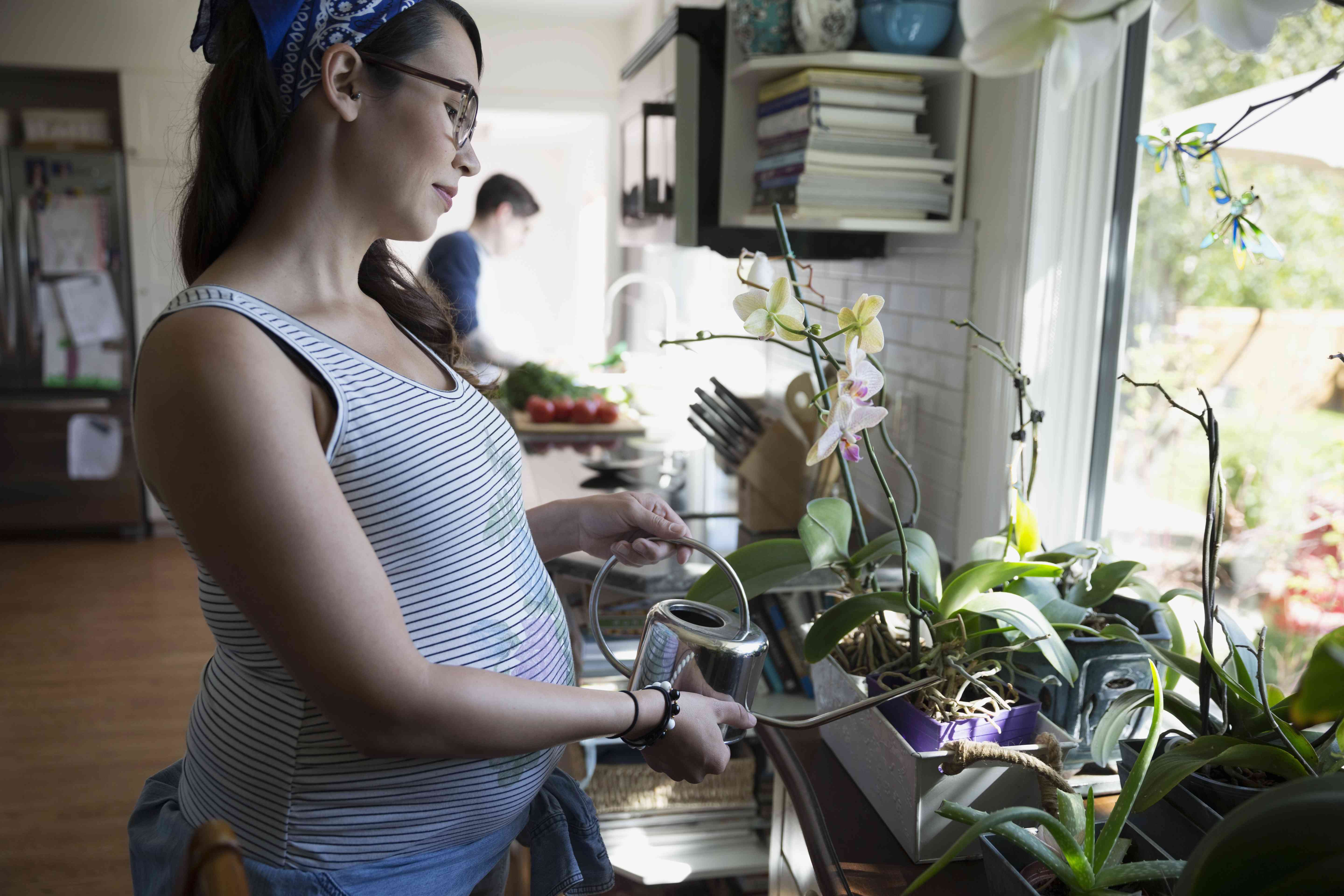 Pregnant woman watering orchids in kitchen