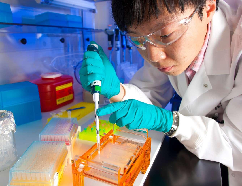 Scientist in lab working on AIDS vaccine