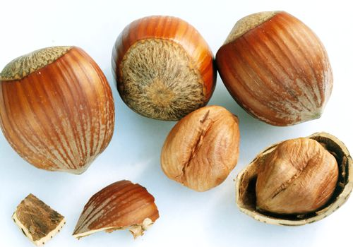 hazelnuts with and without shell on white background