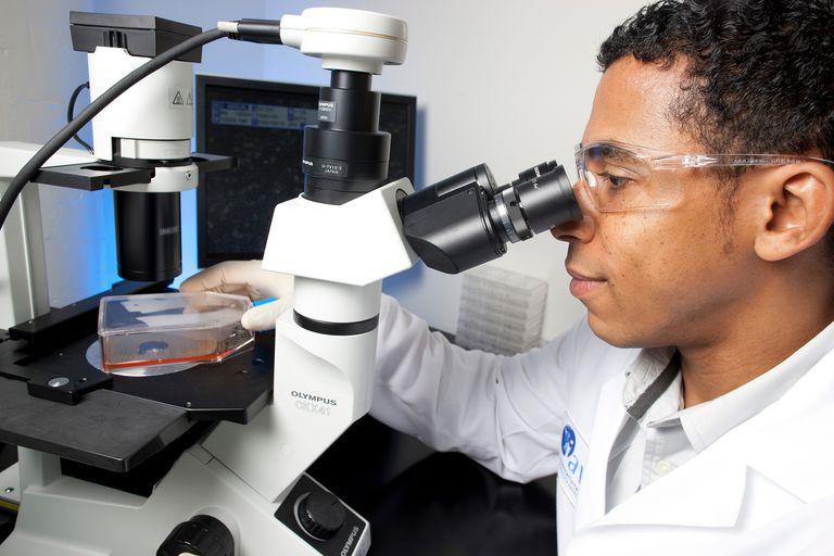 Scientist looking through microscope.