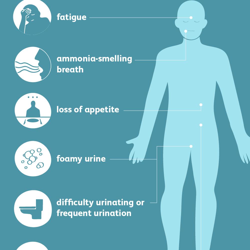 Kidney Disease Signs And Symptoms