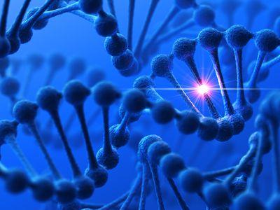 Genetic mutation