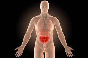 3d illustration human body crohn's intestines infection with clipping path