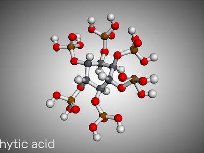Phytic acid molecule