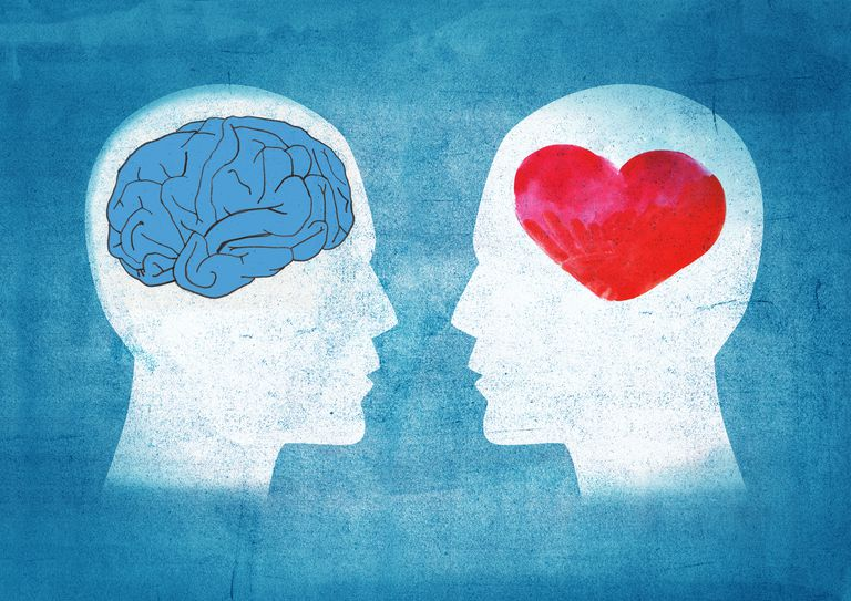 Illustration of a head with a brain and a head with a heart
