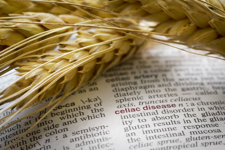 Wheat and celiac disease definition in a dictionary