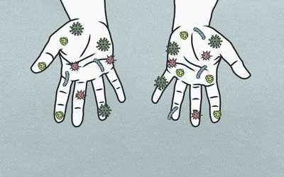 Illustration of bacteria and viruses on a pair of hands.