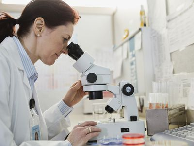 female doctor looking in microscope