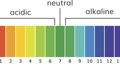 pH scale, alkaline water is an 8 or 9