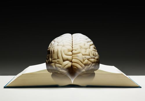 graphic of a brain on a book