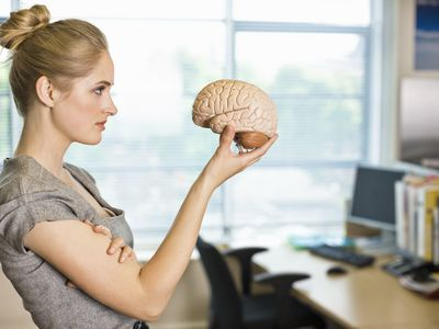 woman holding and looking at a plastic brain