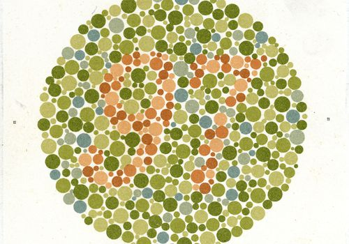 An Ishihara Chart for testing color-blindness.
