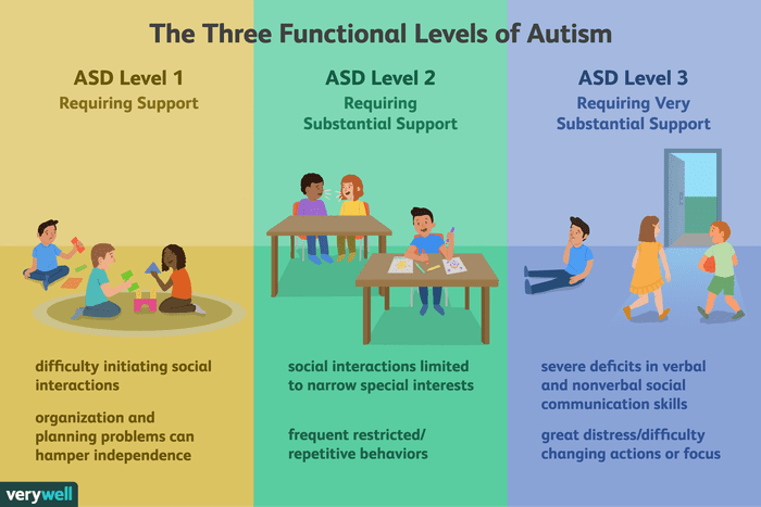 What-are-the-three-levels-of-autism-260233-5baab02fc9e77c002c390bd2.png