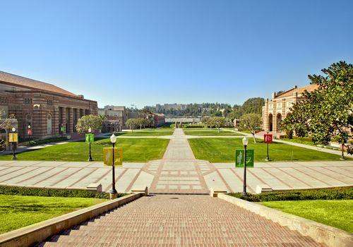 Empty lawns between college buildings