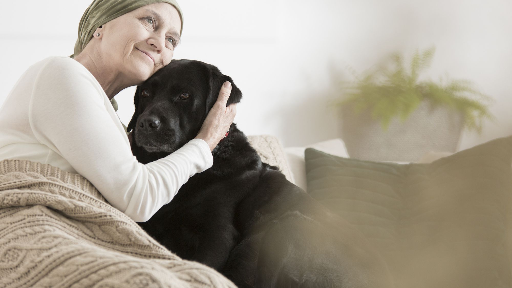 Should Cancer Patients Keep Their Pets?