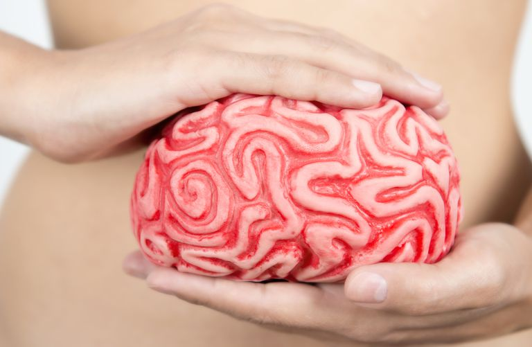 Woman holding a ceramic brain in front of her stomach