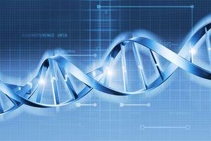 Genetic Diagram