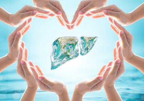 World Hepatitis C Day design logo concept with liver surrounded by hands in a heart shape.