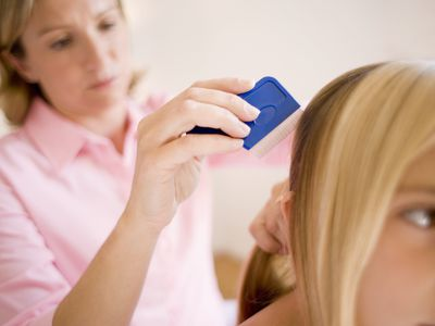 Mom Combing Out Head Lice