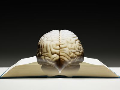a brain resting on a book