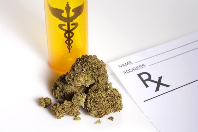 medical marijuana buds on a table