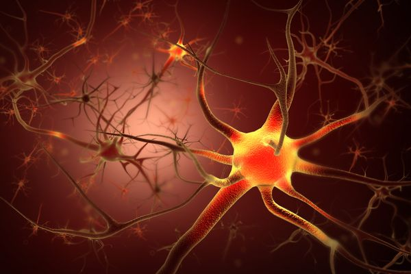 Repairing Myelin in Multiple Sclerosis