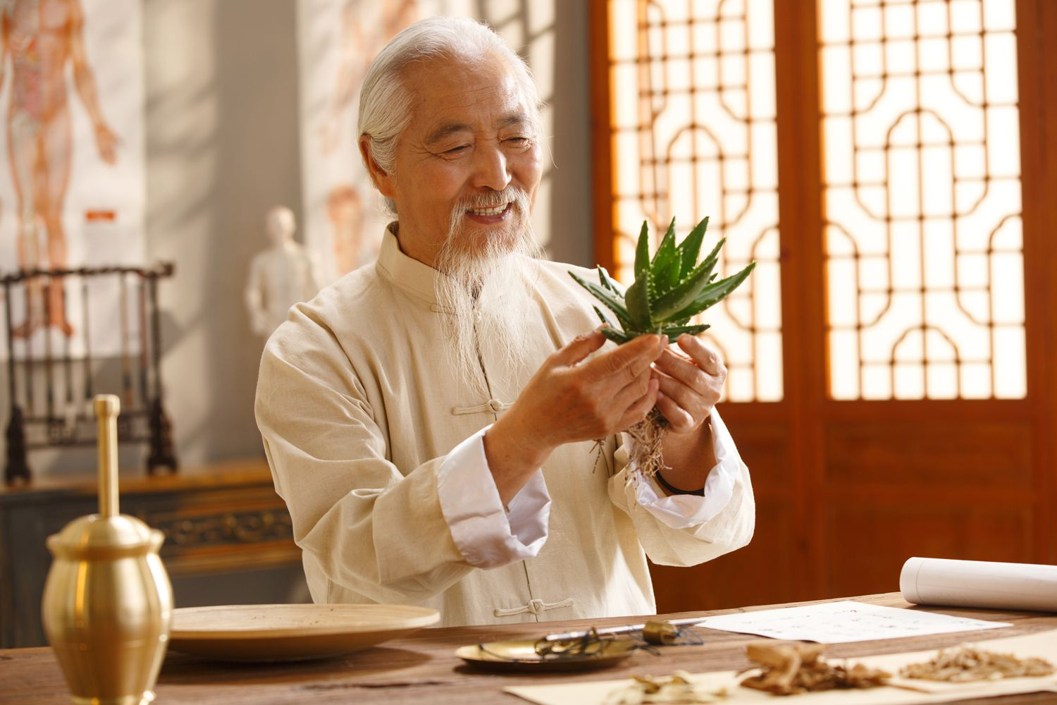 Difference Between a Naturopath and Naturopathic Doctor