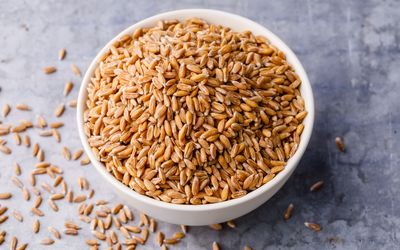 Bowl of emmer wheat