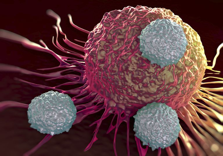 diagram of cancer cells