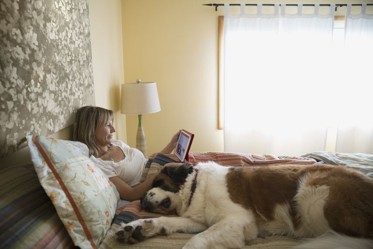 Woman resting in bed with dog