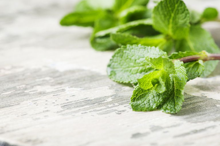 Sprigs of peppermint on a table