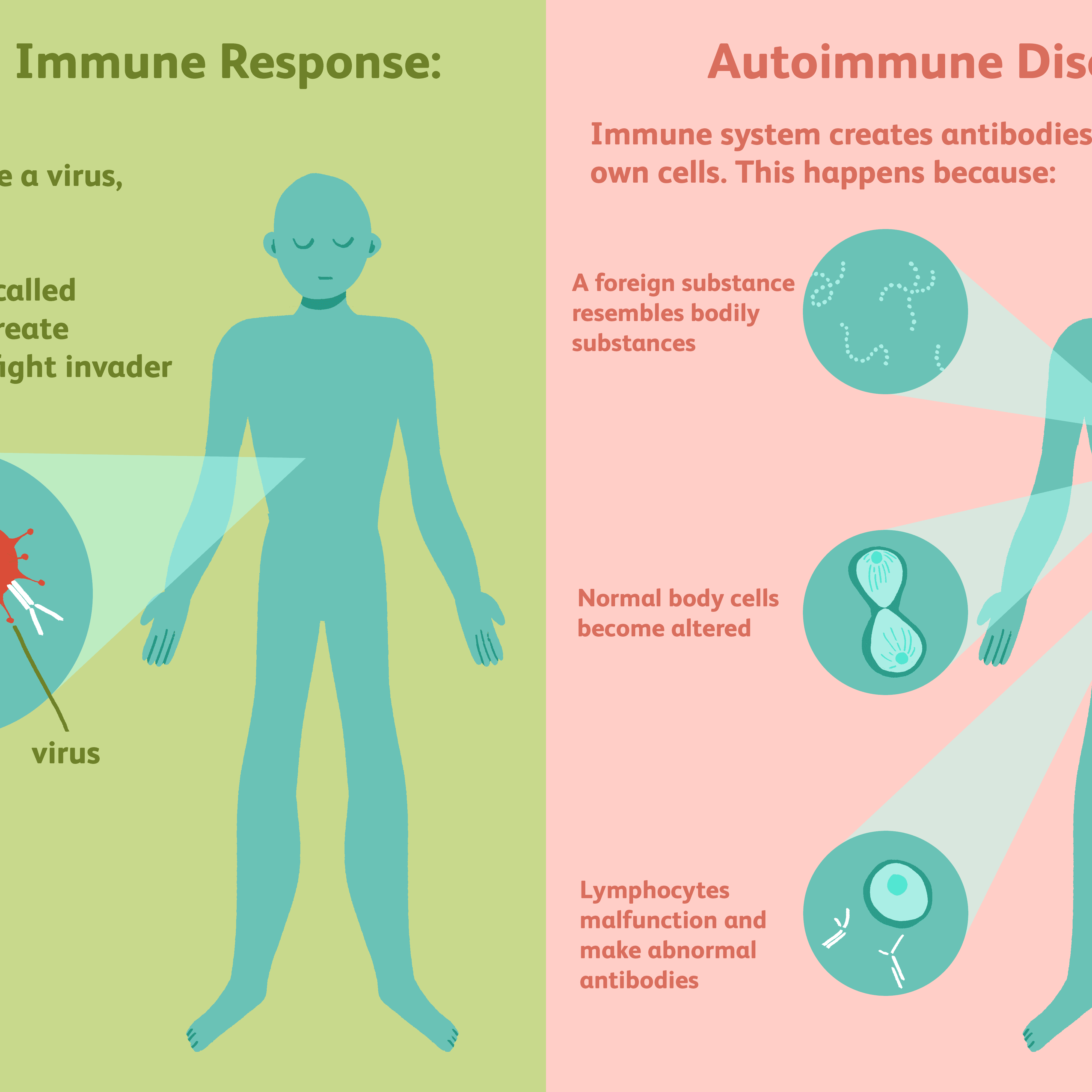 psoriasis and overactive immune system)