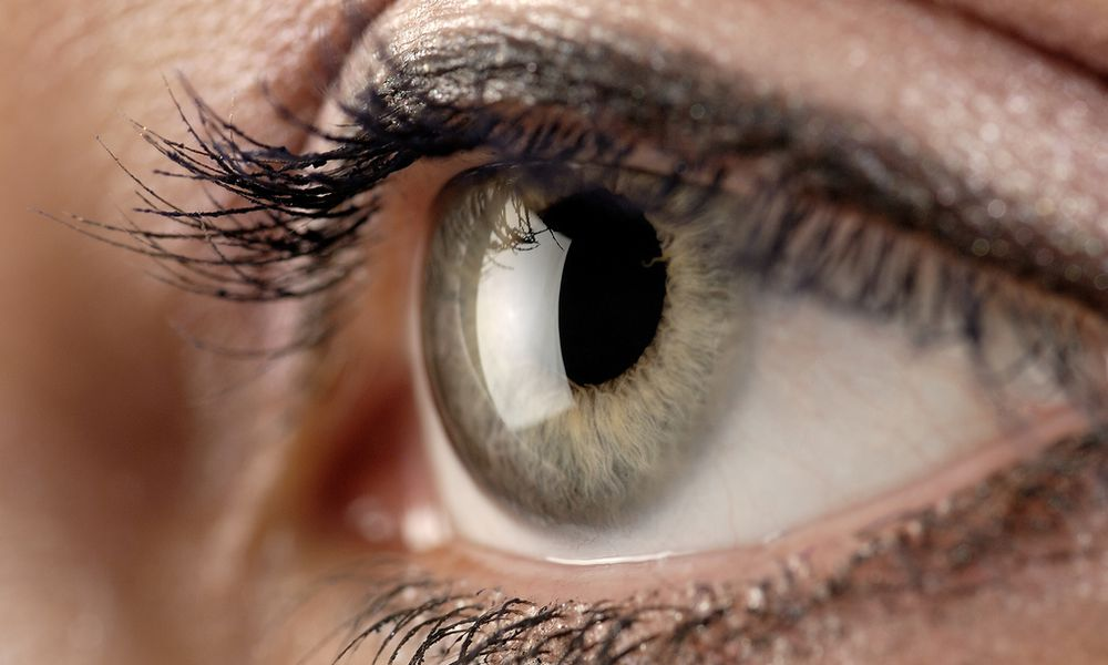 Cornea.jpg used under a Creative Commons license at https://www.flickr.com/photos/kylemay/1573158163/